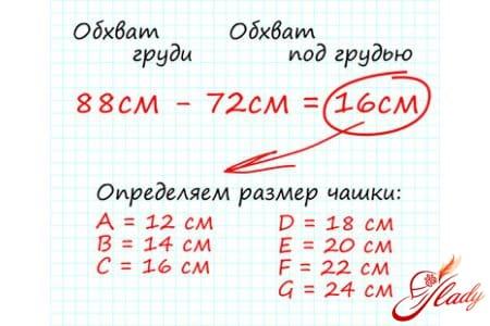 Расчет размера бюстгалтера